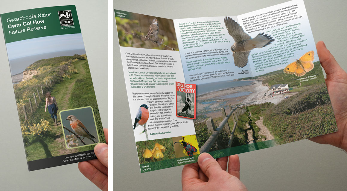 Leaflet for Wildlife Trust - Cwm Col Huw Nature Reserve